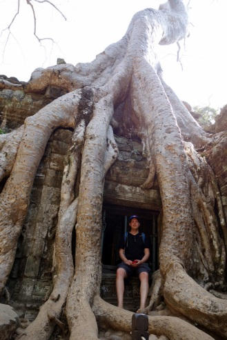Yet another masive tree at Ta Prohm