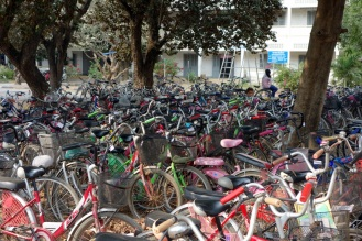 Estimated bicycle mode share for school trips ~100%