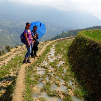 Walking the terraces (Day 2)