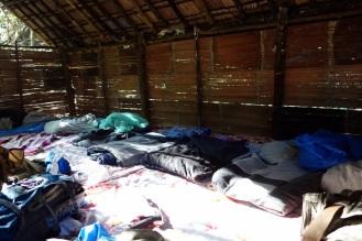 Jungle camp. Surprisingly awesome acomodation.