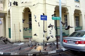 Georgetown streets