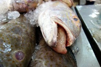 Fish market. I think this is the air bladder (maw?) sticking out the mouth. Not actually a tongue.