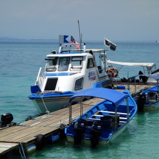 The universal diver boats