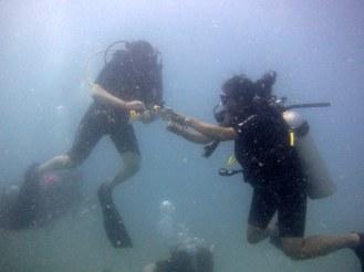 Underwater naturalist in action