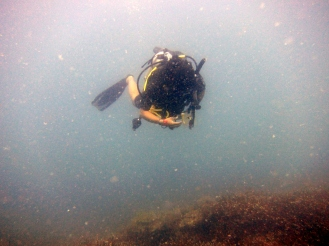 Jesse diving