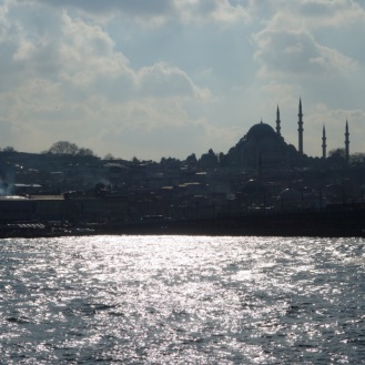 Bosphorus Views