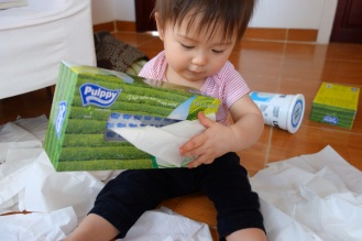 Daniel discovers the joys of tissue paper boxes
