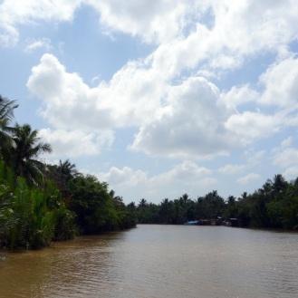 Beautiful palm-line rivers