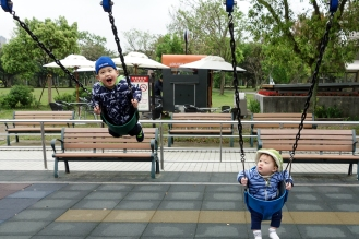 Brothers swinging at Da'an Park